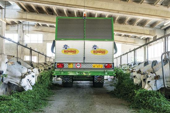 Distribuzione-erba-con-falcia-autocaricante-Bonino-feeding-out-zero-grazing-distribution-herbe-avec-faucheuse-autochargeuse