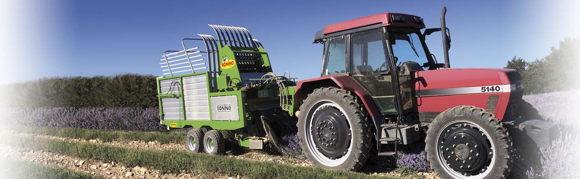 Bonino-macchina-raccolta-lavanda-alavoro-machine-harvesting-lavandula-dentata-machine-récolte-lavande-en-action