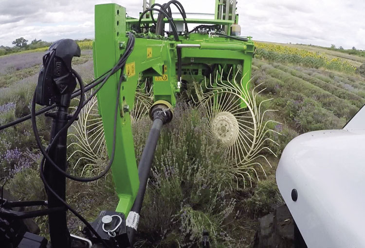 Bonino-macchina-raccolta-lavanda-lavender-harvesting-machines